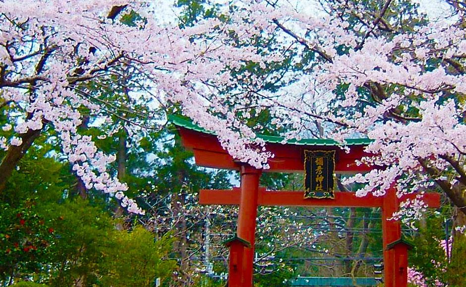 Yahiko-jinja Shrine