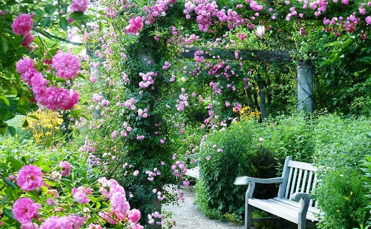 Tateshina Highlands Barakura English Garden Guide Location And