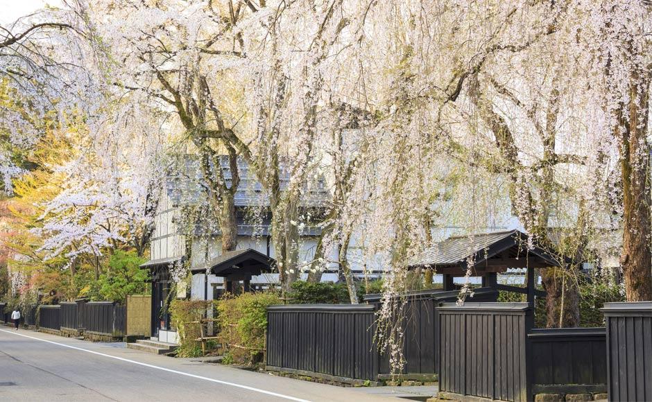Kakunodate Samurai Residence Area