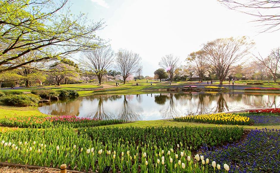 국영 쇼와 기념 공원
